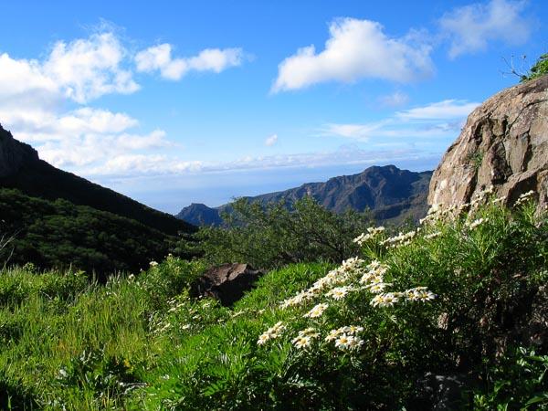 Grüner Osten von La Gomera
