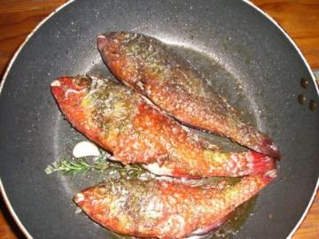 Restaurants La Gomera