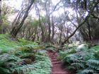 Wundervolle Wanderpfade führen durch den Nationalpark