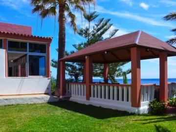 Garten mit Palmen des Ferienhauses am Meer