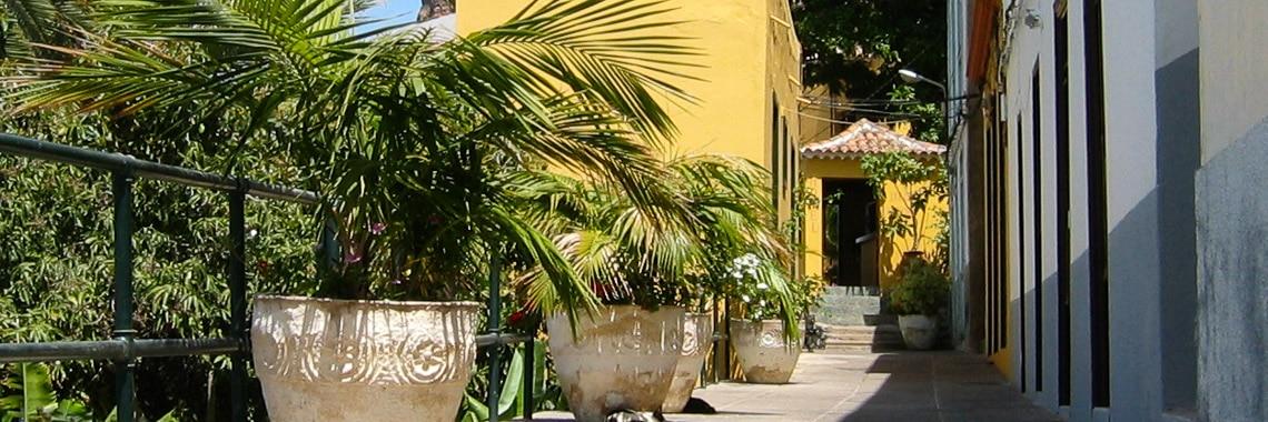 Bilder La Calera (Valle Gran Rey)