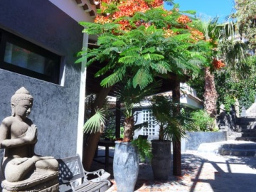 Impressionen Jardin Tropical